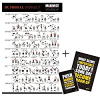 Exercise Fitness Poster, Full Body Workout, A Personal Trainer Guide Chart ,20X30, Bonus 2 Inspirational Gym Posters- By Bltzpro