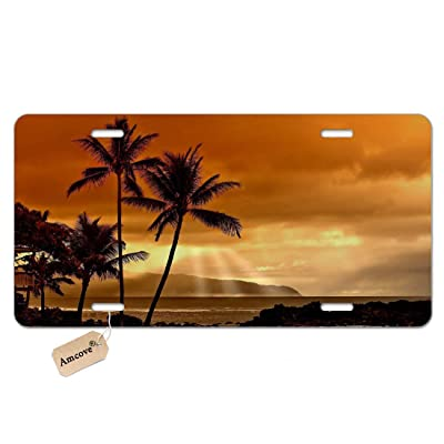 Amcove Ocean Sunset Metal Novelty License Plate Palm Trees Ocean Waves Tropical Beach Novelty Vanity License Plate Tag Sign,6 X 12 Inch: Automotive