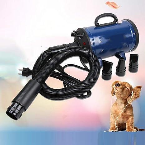 Peluquería para Mascotas,Secador De Pelo Profesional,para Mascotas Soplador De Agua,para Perros Secador De Pelo De Alta Potencia,Blue: Amazon.es: Deportes y aire libre