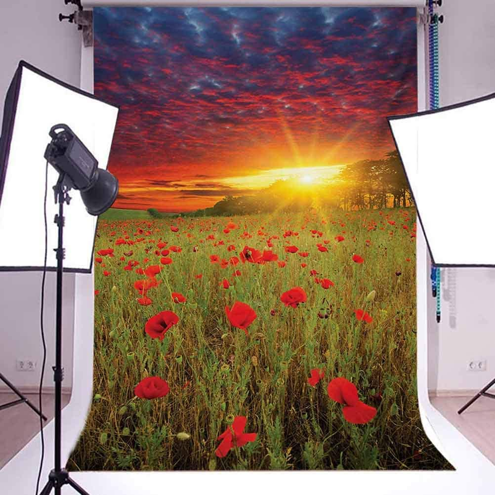 Flower 10x15 FT Photo Backdrops,Meadow with Grass and Poppies Dark Dramatic Sky in The Background Background for Baby Birthday Party Wedding Vinyl Studio Props Photography Green Scarlet Cadet Blue