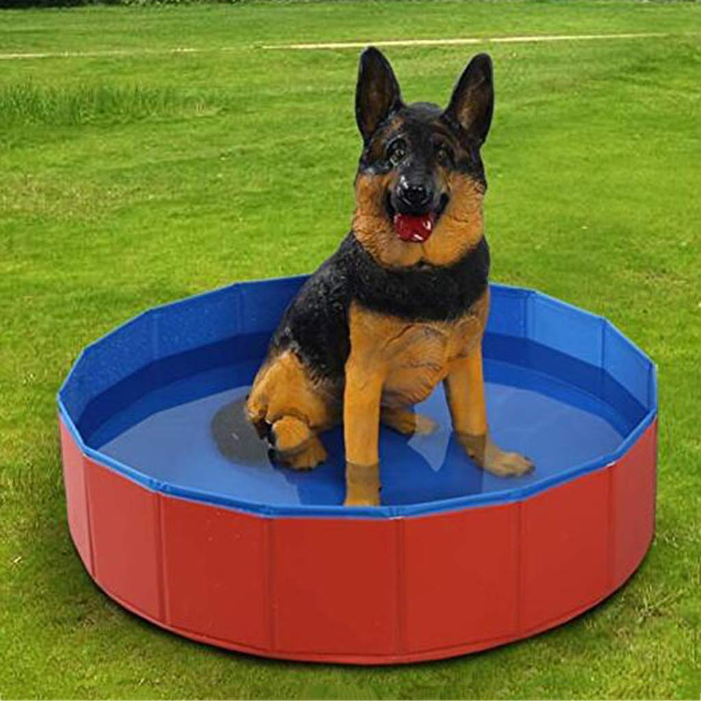 31.5inchesby8inches Foldable Dog Pool Portable Pet Bathtub Outdoor Cat Swimming Water Pool Outdoor Swimming Playing Pond Dogs Grooming Shower & Bath Accessories in Summer. Cacoffay