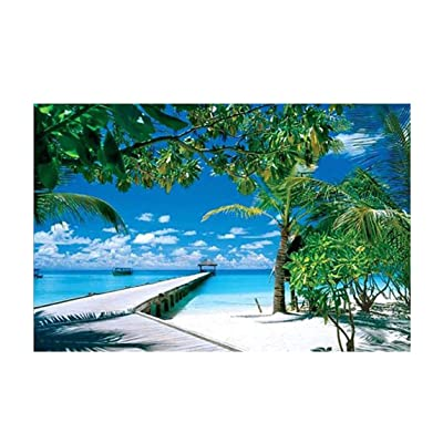 Chezaa Puzzle Coconut Tree Scenery 1000 Pieces Jigsaw Puzzles for Adults Kids Games Sorting Vivid Collection Gift: Toys & Games