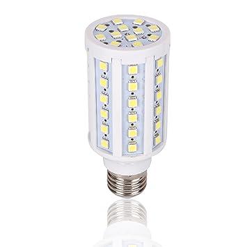 Medium base 12 volt led light bulb dc 12v 20v 6000k bright white medium base 12 volt led light bulb dc 12v 20v 6000k bright white screw e26 workwithnaturefo