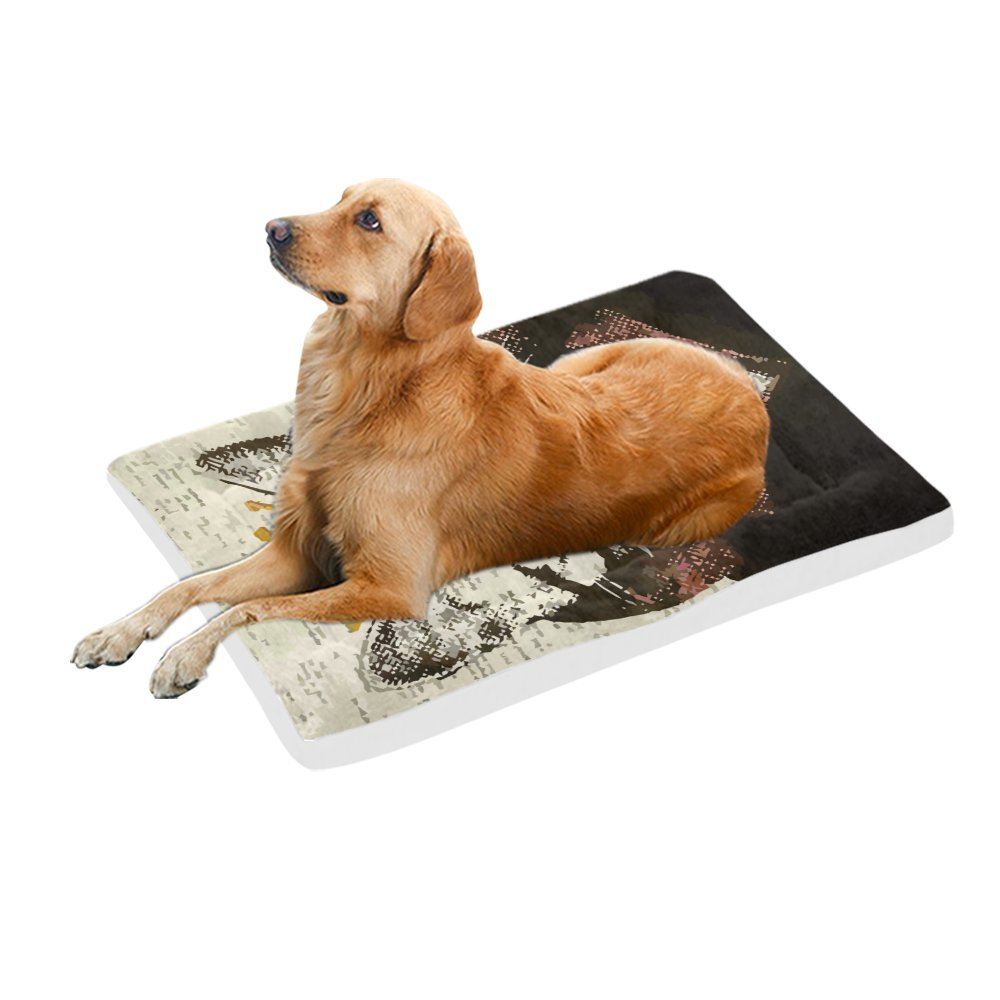 42\ your-fantasia Funny Cat King Pet Bed Dog Bed Pet Pad 42 x 26 inches