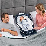 Baby Delight Snuggle Nest Surround Extra-Long Portable...