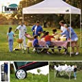 Eurmax 10x10 Ez Pop Up Canopy Outdoor Canopy Instant Tent with 4 Zipper Sidewalls and Roller Bag,Bouns 4 Weight Bags
