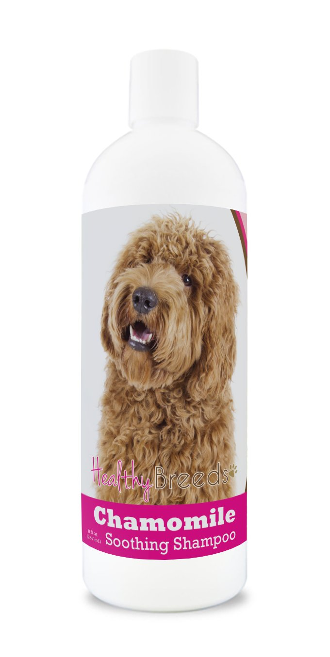 Healthy Breeds Chamomile with Oatmeal & Aloe Soothing Shampoo & Conditioner - Over 200 Breeds - Safe with Flea Topicals - Orange & Cucumber Melon Scent - 8 oz 1020-sibh-001