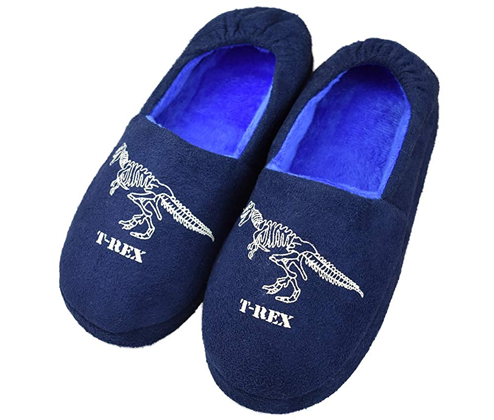 Tirzro Little Kids Big Boys Warm Slippers with Soft Memory Foam Slip-on Indoor Cute Dinosaur Shoes