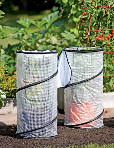 pop-up-grow-bag-accelerator