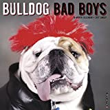 Bulldog Bad Boys 2017 Wall Calendar