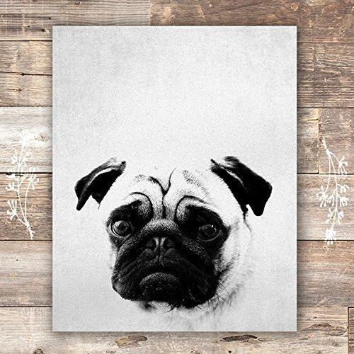Black And White Photo Charm - Pug Wall Art Print - Pug Life - Unframed - 8x10