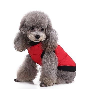 Amazon.com: Glumes Clearance - Chaqueta para perros con ...