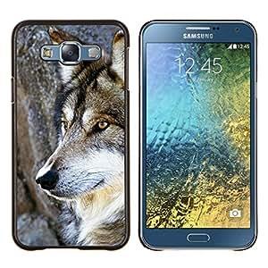 EJOOY---Cubierta de la caja de protección para la piel dura ** Samsung Galaxy E7 E700 ** --Wol salvaje árbol Naturaleza Animal Perro de Brown