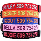 Personalized Dog Collar, Custom Collars Embroidered w/Pet Name & Phone Number – Blue, Black, Pink, Red & Orange Collars for Boy & Girl Dogs; 4 Adjustable Sizes: XSmall, Small, Medium, Large