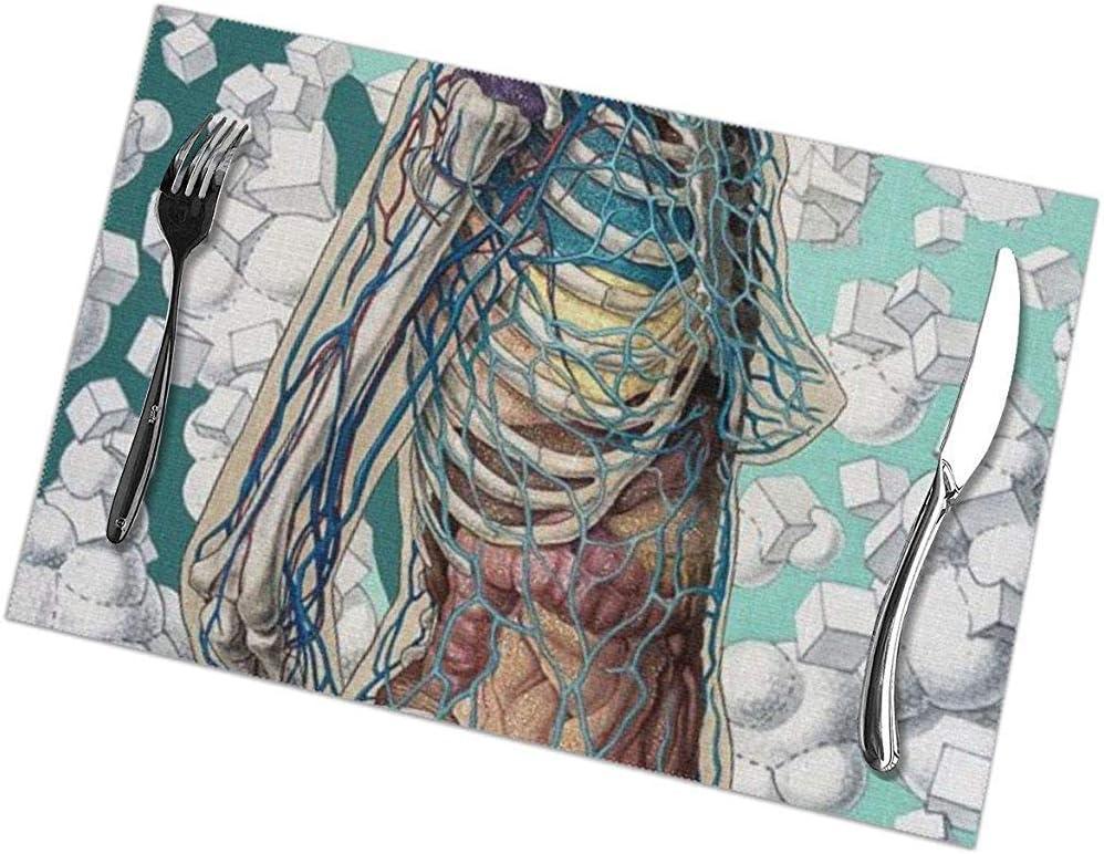 GuyIvan Manteles Individuales Juego de 6 Mesa de Comedor Manteles Individuales Arte de anatomía Corporal Mantel Individual Antideslizante Lavable