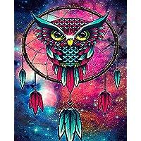 Owl Dream Catcher DIY 5D Full Drill Diamond Painting Kit, Canvas Wall Décor | Canvas Size 30 x 40 cm | 11.8 x 15.7…
