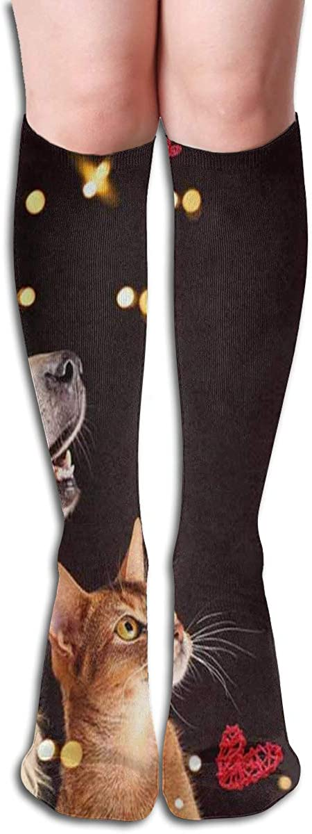 Socks Collection Of Cute Animals Designer Womens Stocking Accessory Sock Clearance For Girls