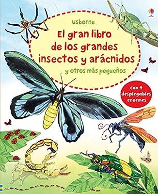 El Gran Libro De Los Grandes Insectos Y Arácnidos Y Otros Más Pequeños 4 Despegables Enormes: Amazon.es: Bone, Emily: Libros