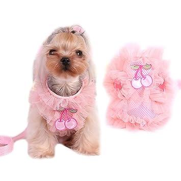 Mignon Dentelle Petite pour animal domestique Chat Chien Gilet Harnais et laisse  pour chien Puppy Walk c80d23d3a757
