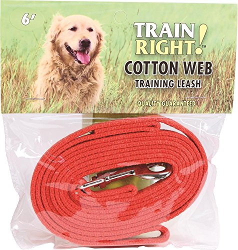 Coastal Pet Products DCP506RED Cotton Web Collar Lead for Pets, 5/8 by 6-Feet, Red