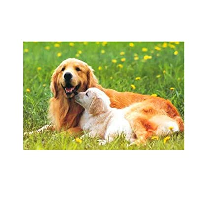 EKIMI Jigsaw Puzzles for Adults 1000 Piece - Golden Retriever and Her Baby - Decompression Fun Toy - Parent Child Cooperative Games: Toys & Games