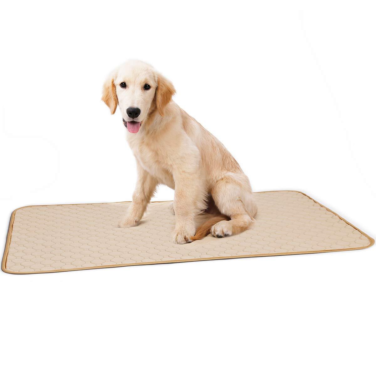 Beige L (100x67cm) Beige L (100x67cm) Penivo Waterproof Dog Pee Pad Reusable Diapers Super Absorbent Pet Cat Training Pee Pad Diaper Antibacterial Puppy Dog Nappy Cleaning Cage Mat (L (100x67cm), Beige)