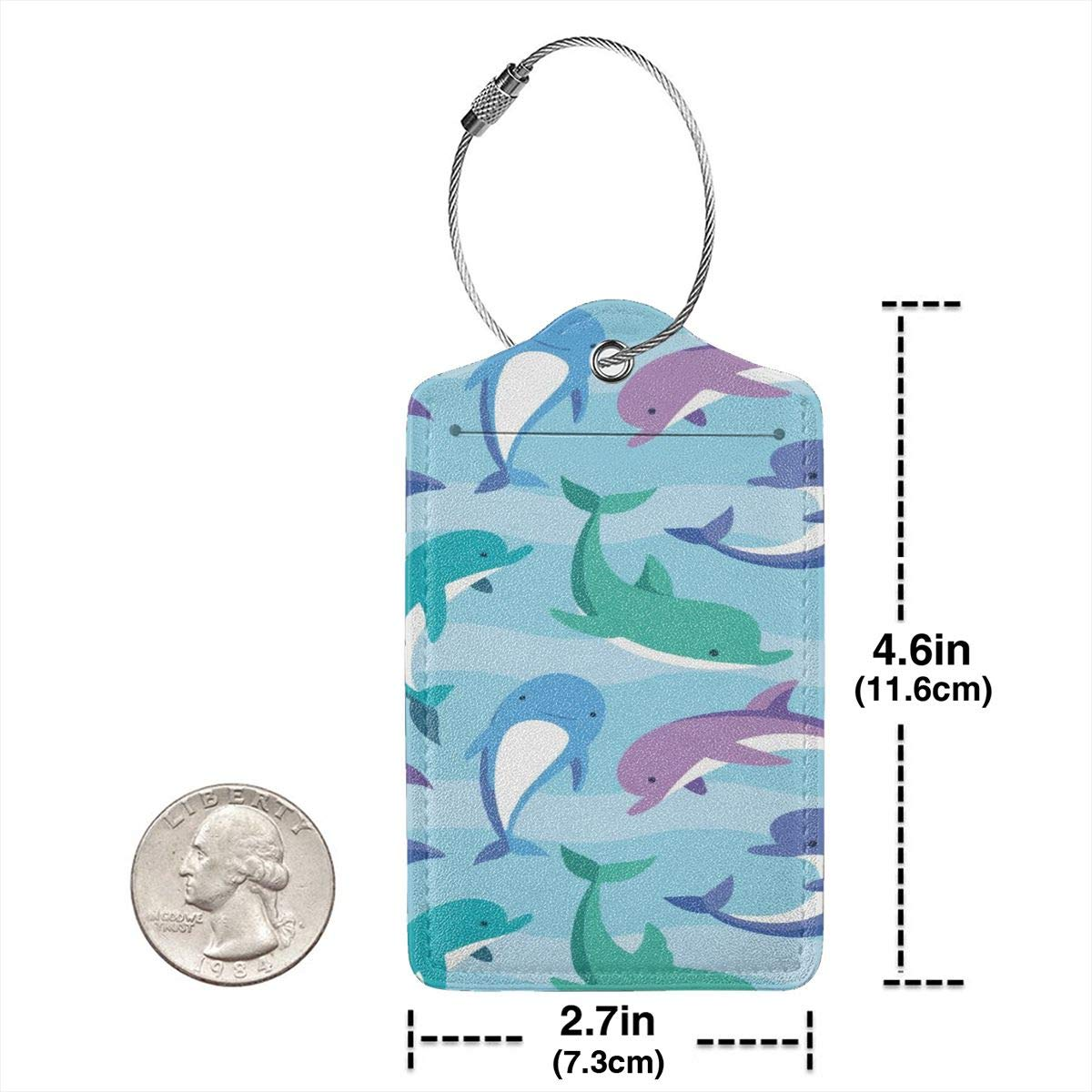 Key Tags for Cruise Ships Honeymoon Gift Leather Luggage Tags Full Privacy Cover and Stainless Steel Loop 1 2 4 Pcs Set Cartoon Cute Dolphin 2.7 x 4.6 Blank Tag