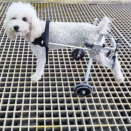 Hh001 Silla de Ruedas para Perros para la rehabilitación de ...