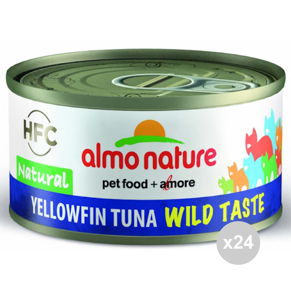 Almo Nature Juego de 24 Gato 5320 Lata 70 atún Wild Taste ...