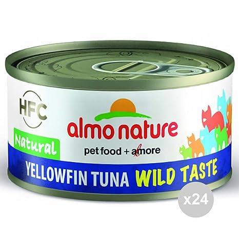 Almo Nature Juego de 24 Gato 5320 Lata 70 atún Wild Taste Comida para Gatos,