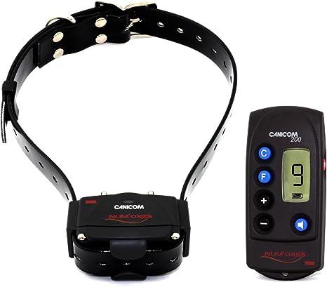 Batterie pour Delta XC Remote Dog Training Collar