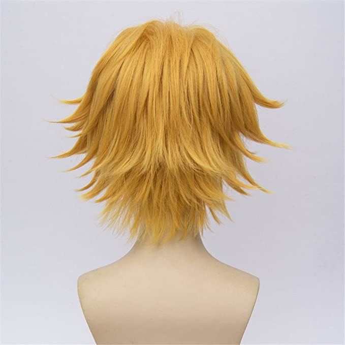 LanTing Peluca Miraculous Ladybug chat noir Blonde Cosplay Party Fashion Anime Human costume Full Wigs Synthetic Hair Heat Resistant Fiber Hair: Amazon.es: ...