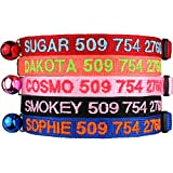 Personalized Breakaway Cat Collars with Safety Release Buckle - Custom Embroidered with Pet Name and Phone Number - Safe Adjustable Nylon ID Collar with Bell for Cat or Kitten