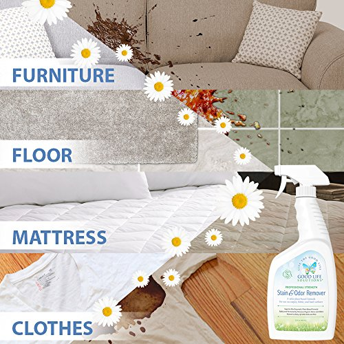 Stain Remover and Odor Eliminator - The Best Professional Strength Toddler, Dog and Cat Urine Cleaner - A Safer Plant-Based Enzyme Formula for Carpet Fabric Upholstery & Hard Floors ECO-FRIENDLY 32oz by Good Life Solutions (Image #5)
