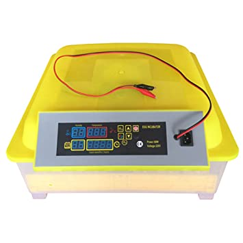 Solarnovo Incubadora Automática para Huevos de Gallinas Aves con Control de Temperatura Manual con Pantalla Digital