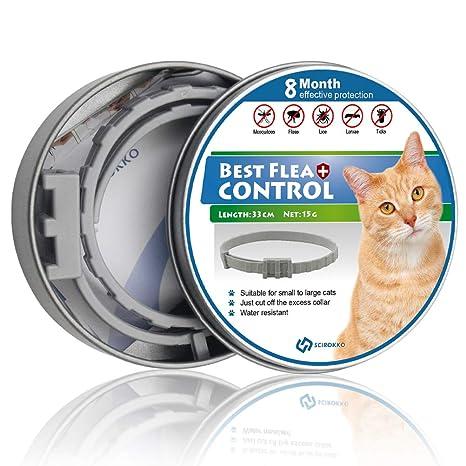 SCIROKKO Collar de pulgas y garrapatas para Gatos, Tratamiento para pulgas y garrapatas, protección