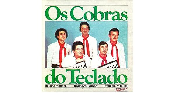 Morena dos meus Encantos by Os Cobras do Teclado on Amazon Music - Amazon.com