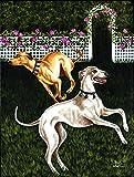 Caroline's Treasures AMB1354GF Rose Garden Frolick Greyhounds Garden Flag, Small, Multicolor