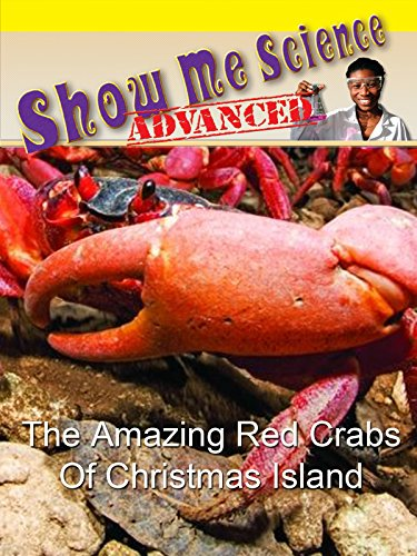 The Amazing Red Crabs of Christmas Island by