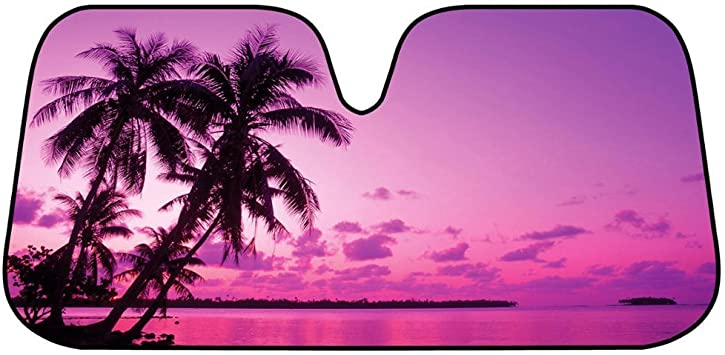 Beautiful Purple Pink Palm Trees Sunset Car Auto Carpet Floor Mats Front /& Rear