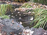 EasyPro NP3030 Premium 3/4-Inch Pond Cover