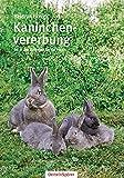 Kaninchenvererbung 01: Ratgeber für die Praxis