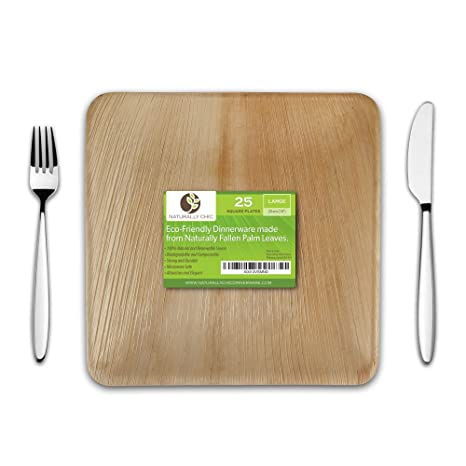 10u0026quot; Square Disposable Palm Leaf Paper Plates Compostable Biodegradable Heavy Duty Dinner Party  sc 1 st  Amazon.com & Amazon.com: 10