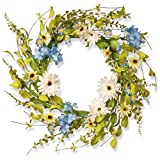 National Tree 20 Inch Floral Branch Wreath with Blue Hydrangeas and White Gerberas (RAS-S0371C)