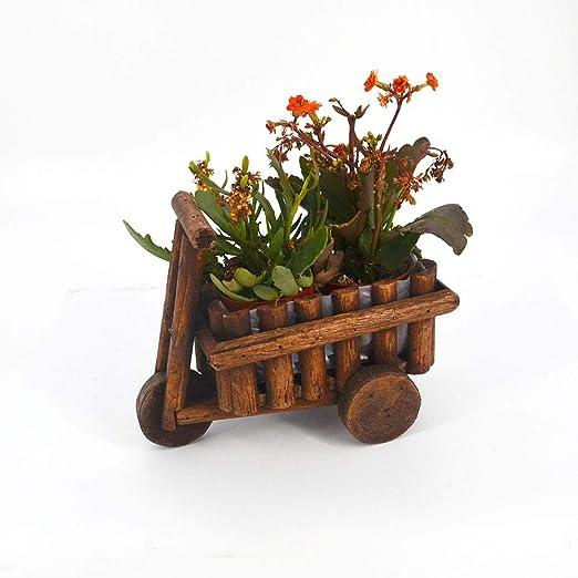 Estatua para jardín Maceta de Madera PlanterFlower Plantas de Aire suculentas Florero Hallow out Holder para la decoración (Color : Marrón, tamaño : 23 * 12 * 18cm): Amazon.es: Hogar