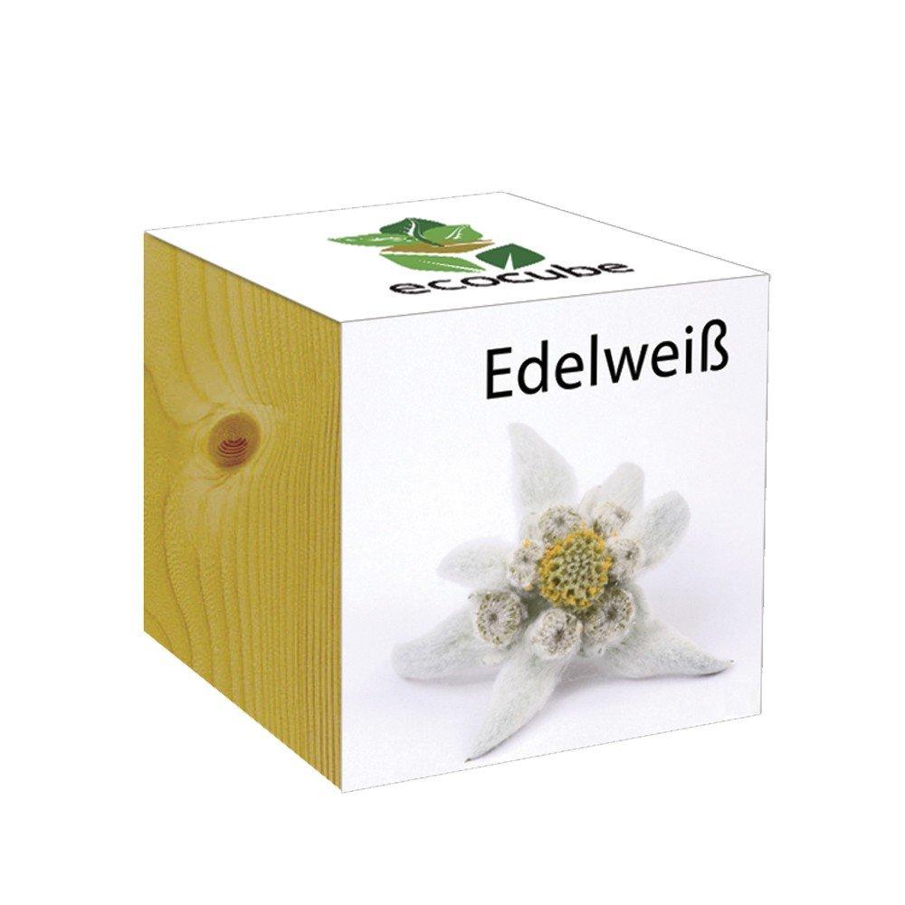 ecocube Holzwürfel - Edelweiß