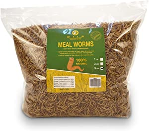 diig Non-GMO Dried Mealworms/Crickets/Black Soldier Fly - Treats for Birds Chickens Hedgehog Hamster Fish Reptile Turtles (5 lb, Mealworms)