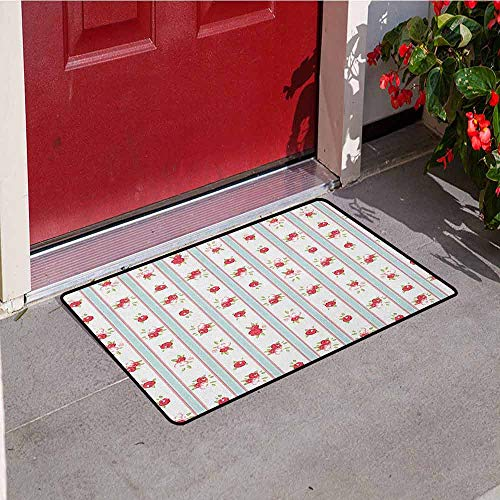 (GloriaJohnson Shabby Chic Welcome Door mat Vertical Borders Cute Rose Blooms Cottage Country Cabin Design Door mat is odorless and Durable W31.5 x L47.2 Inch Baby Blue Dark Coral Green)