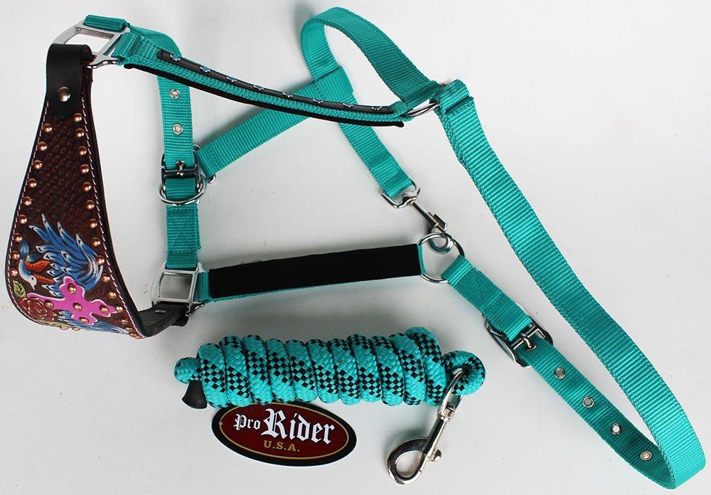 Noseband Tack Bronc Leather Horse HALTER Tiedown Lead Rope Pink 280639T   B01N5FHHU1