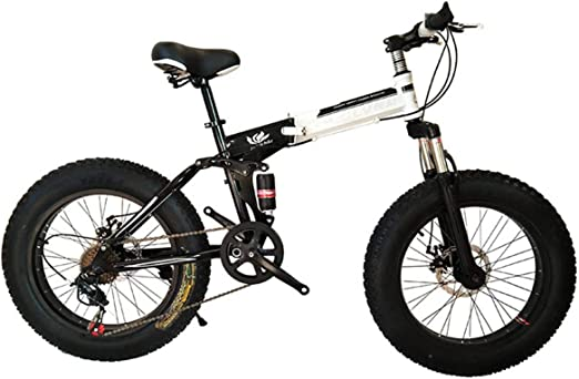 Dapang Bicicleta de montaña Plegable, 20 Pulgadas, Velocidad 21/24 ...